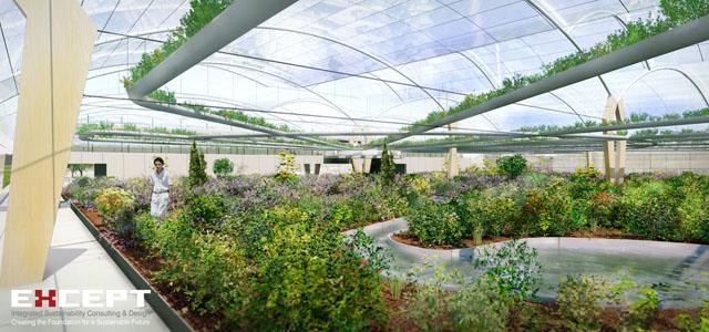 llenar los tejados de nueva york con invernaderos podra suministrar alimentos suficientes para buena parte de sus habitantes segn la compaa holandesa - Huertos En Terrazas
