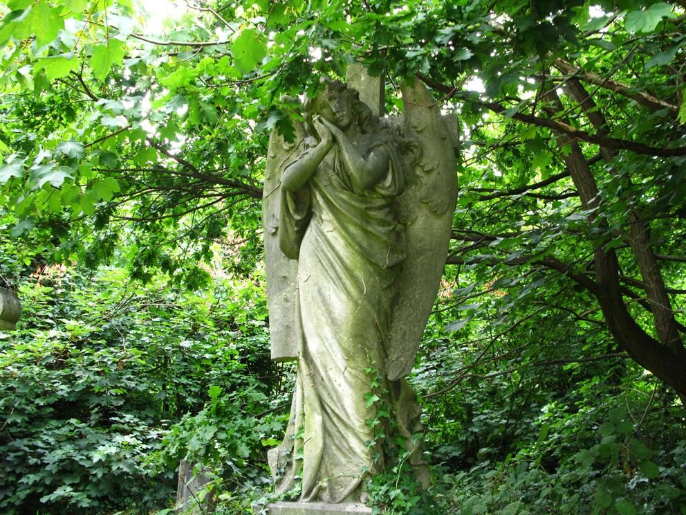 Botanica funeraria 1