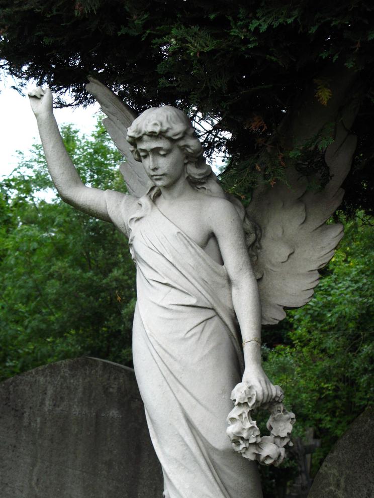 Botanica funeraria 8