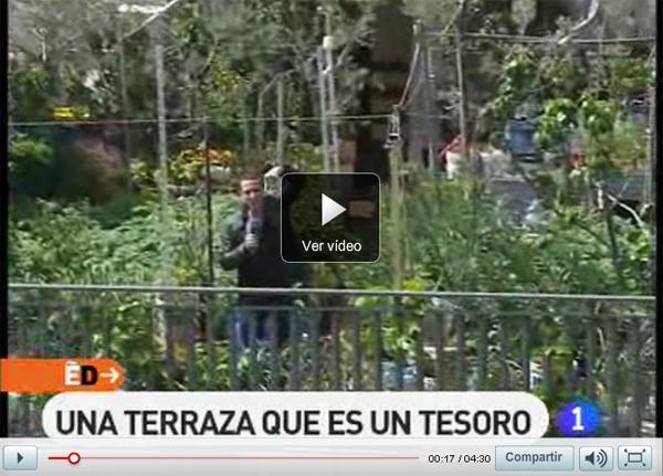 España Directo te sube al huerto