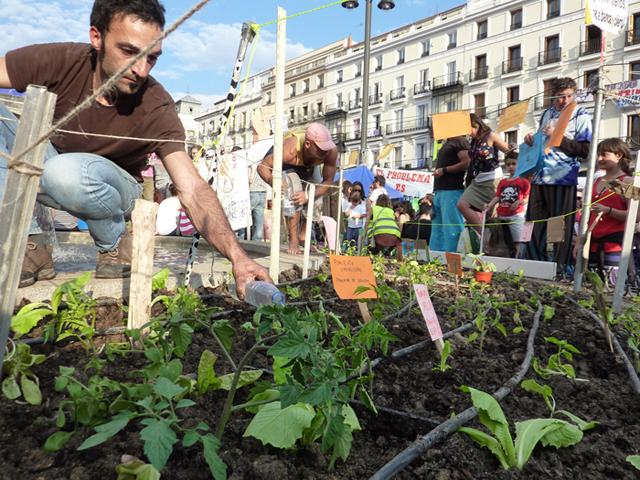Huerta en Puerta del Sol