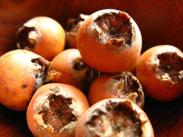 Níspolas: frutos olvidados de invierno