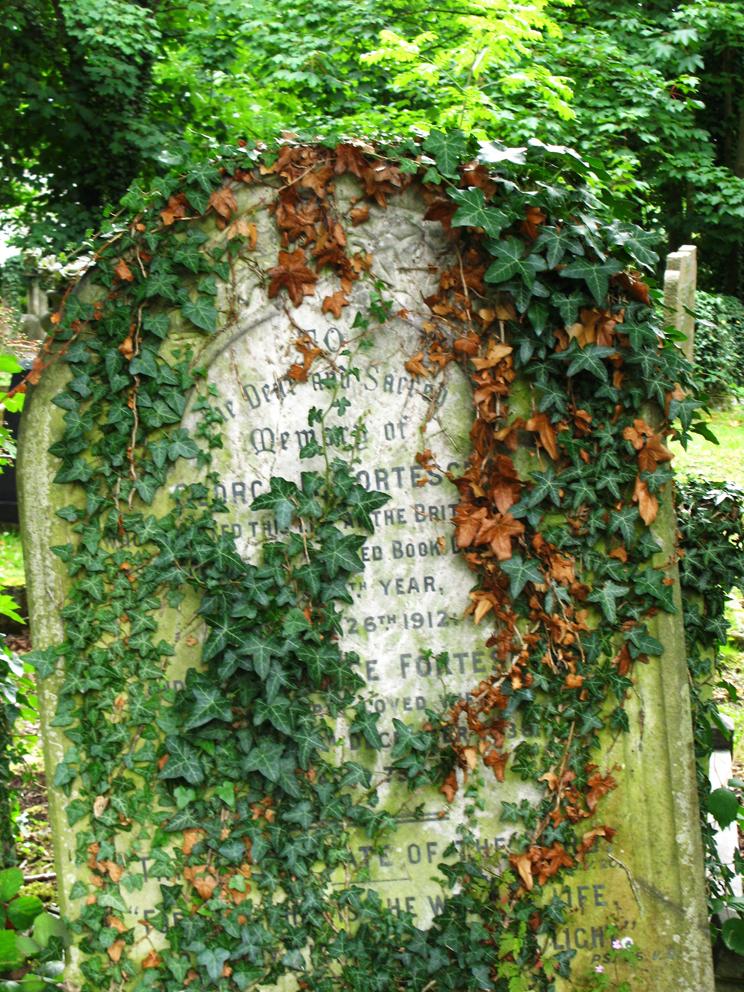 Botanica funeraria 5