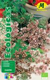 Semillas ecologicas Mascarell